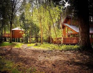 盘点全球10大丛林小屋