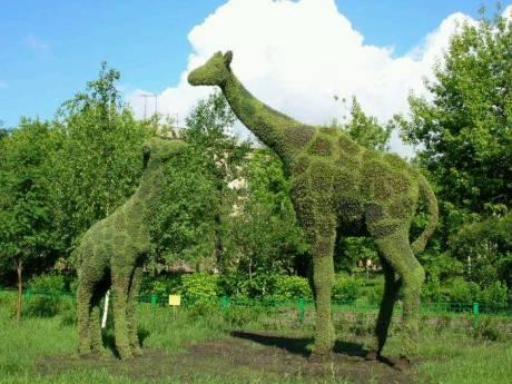 植物也能卖萌 动物雕塑园艺大集合