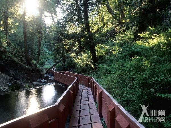 原始森林中的仙境:智利温泉