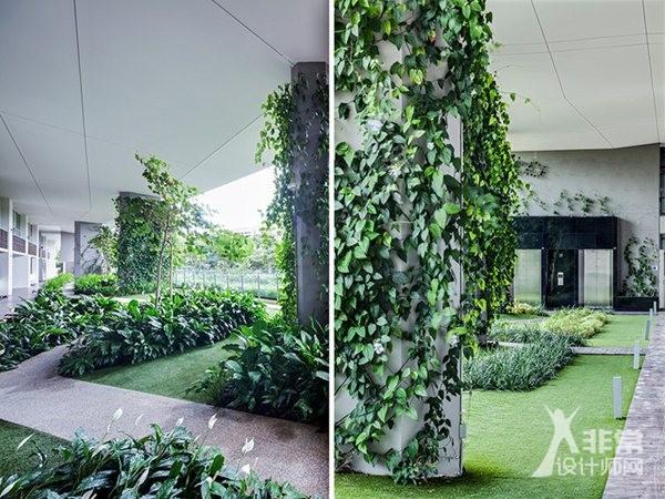 新加坡法式垂直花园jardin - 非常设计师网图片