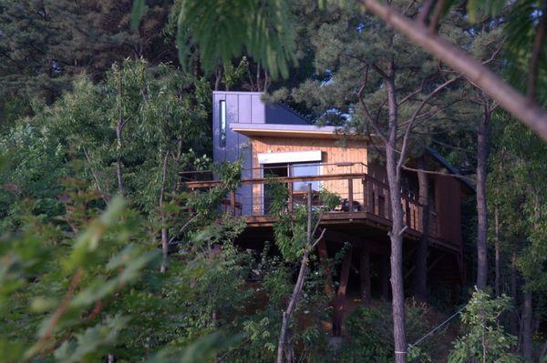 隐于林间而不失舒适性的Sosohun木屋