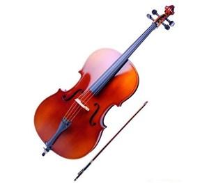 王昌海:中提琴的结构及其演奏方法