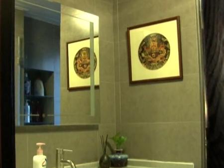 室内软装20 洗手间与淋浴房设计改造要点