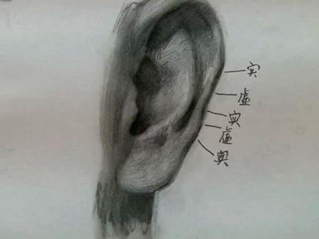 """艺考学堂——""""耳""""素描技法"""